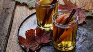 Hot Apple Cider Toddy
