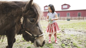 Naleigh feeding the mini horses in her cute skirt