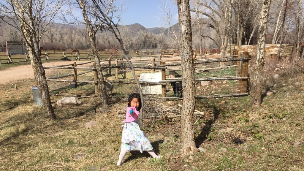 Naleigh Finding one of many Hidden Easter Eggs