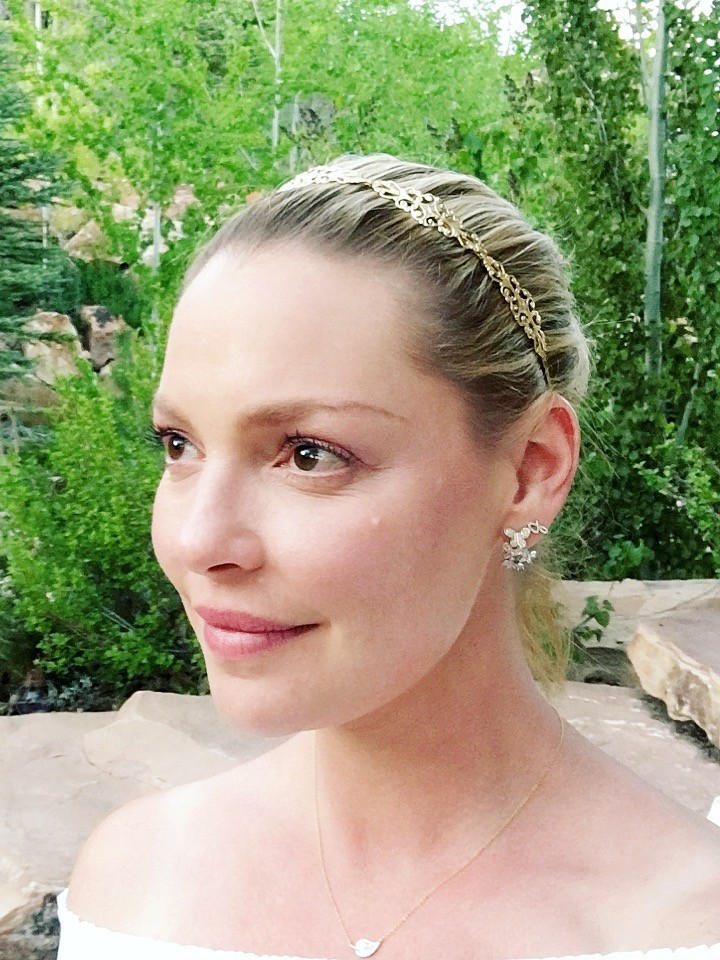 Katherine Heigl wearing a hair accessory