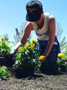 Katherine Heigl planting golden hued marigolds in the bed designated for yellows and oranges.