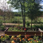 Raised flower beds at Badlands Ranch