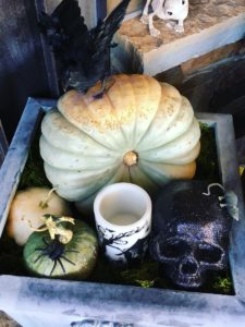 Spiders, glitter skulls, candles, mice and pumpkins