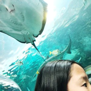Naleigh at Ripley's Aquarium of Canada
