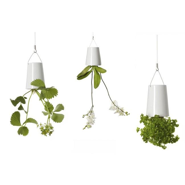 Boskke Hanging Ceramic Planters