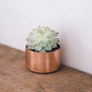 Copper Plant Pots
