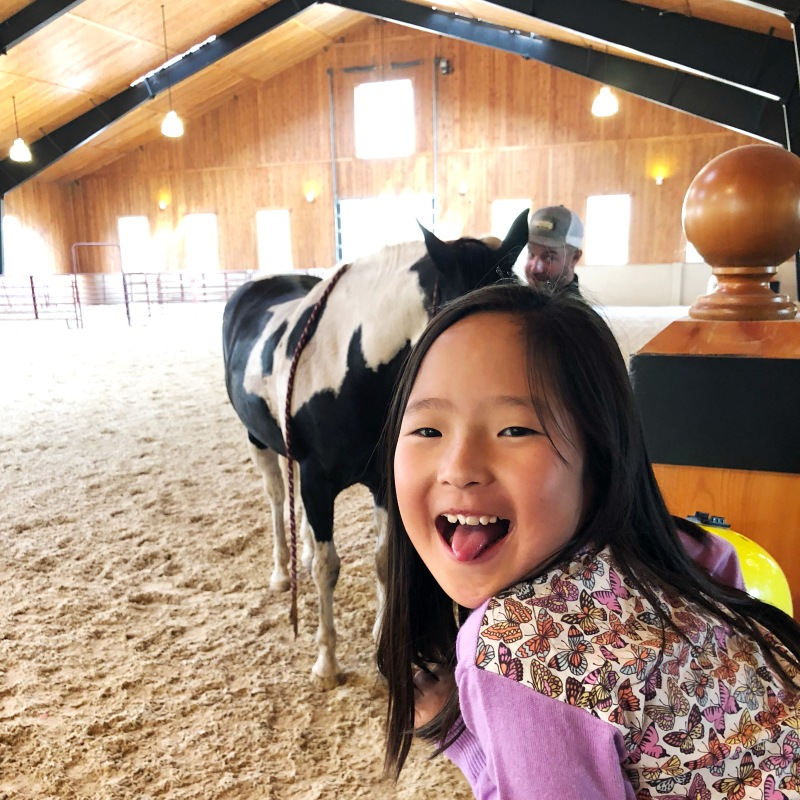 Naleigh hanging out at the barn