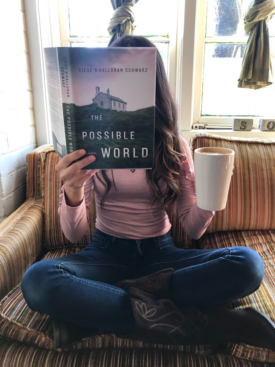 The Possible World By Liese O'Halloran Schwarz